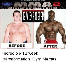 Incredible Meme - before after incredible 12 week transformation gym memes gyms