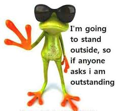 Funny Frog Meme - outstanding frog meme silly bunt