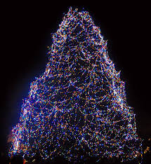 don t miss toledo zoo s lights before a2withkids