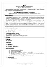Sample Resume For Computer Engineer by Resume Template Of A Computer Science Engineer Fresher With Great