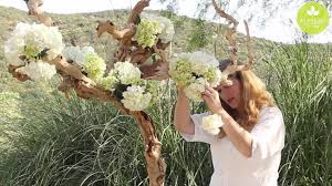 wholesale flowers near me inspired floral design with beth o reilly driftwood tree