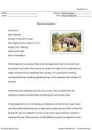 primaryleap co uk reading comprehension african elephant worksheet