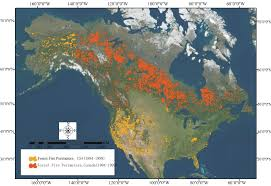 Wildfire Map Of Canada by Vegetation Regrowth Trends In Post Forest Fire Ecosystems Across