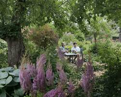 plants native to russia beautiful garden in wis celebrates native plants and finds