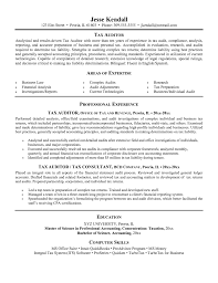 Financial Analysis Report Sles by Accounting Resume Goals Auditor Sle Concise Sales