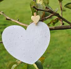 seed paper white seed paper hearts wedding hearts favours