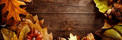 5 thanksgiving devotionals today daily devotional