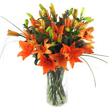 Lilly Flowers Send Tiger Lilies For Uk Flower Delivery From Clare Florist