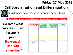 igcse or gcse biology cell structure quizzes and worksheets by