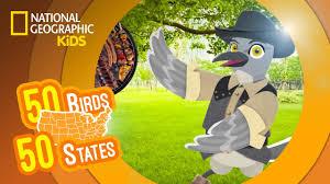 texas feat rapper mc tex the mockingbird 50 birds 50 states
