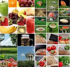 api cuisine pixabay api pixabay medium