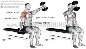 seated alternating dumbbell front raise exercise instructions and