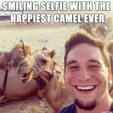 Meme Selfie - funny smiling camel selfie meme picture