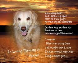 dog memorial pet memorial quotes like success