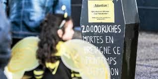 chambre r ionale d agriculture bretagne pesticides la marche èbre des apiculteurs bretons rennes