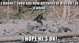 Hope Meme - i hope bigfoot is ok meme pmslweb