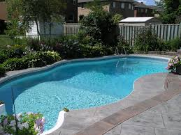 fancy swimming pool design ideas with curve shape pleasant