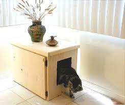 Kitty Litter Bench Cat Litter Box Furniture Wood U2014 Steveb Interior Using Cat Litter