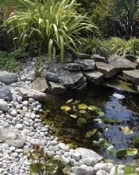 Garden Pond Ideas Attracting Wildlife To Ponds Inc Information On Depth Fish And