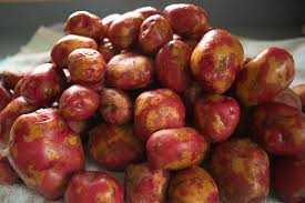 Freezing Root Vegetables - freezing potatoes for winter blogging with apples