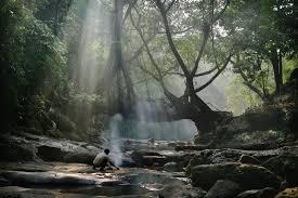 tribes treks and tree bridges in meghalaya india u0027s new adventure