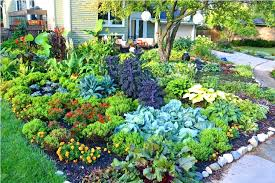 Front Garden Bed Ideas Flower Bed Ideas Front Of House Joze Co