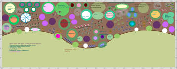 cottage garden border plan pdf