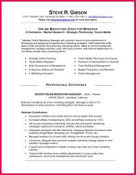 Director Of Ecommerce Resume Social Media Manager Resume Sample Online Marketer And Social