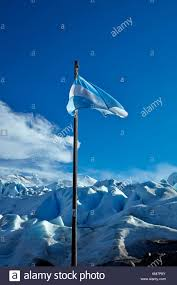argentina flag stock photos u0026 argentina flag stock images alamy
