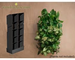 small living wall planter 8 5