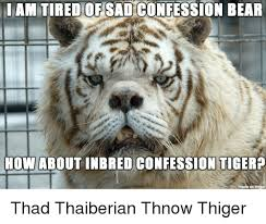 Confession Bear Meme - am tired of sad confession bear how about inbred confession tiger