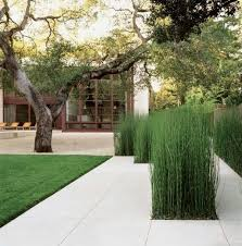 Modern Landscaping Ideas For Backyard by Modern Landscaping Ideas Solidaria Garden