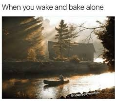 Wake N Bake Meme - when you wake and bake alone copenlygayanimals baked meme on