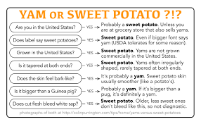 best yam recipes thanksgiving america u2013 angolblog