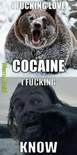 Bear Cocaine Meme - cocaine is a hell of a drug meme by ukenski memedroid