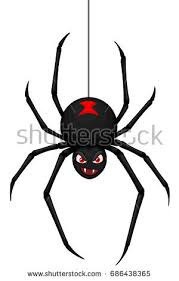 vector illustration cartoon black widow spider stock vector
