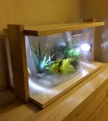 the amazing aquarium design indoor and outdoor ideas aquariums for