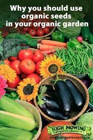 56 best seeds images on pinterest plants urban farming and