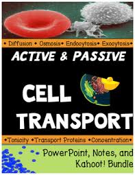 Cell Transport Skills Worksheet Answers Cell Transport Across Cell Membranes Powerpoint Notes And Kahoot