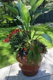 Outdoor Planter Ideas by 673 Best Container Garden Images On Pinterest Pots Gardening