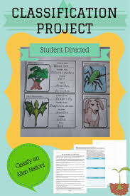 the 25 best dichotomous key ideas on pinterest teaching biology