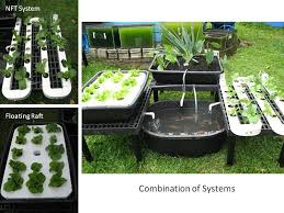 Build Your Own Indoor Garden - 236 best hydroponics images on pinterest hydroponic gardening