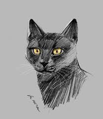 mandatory daily cat sketch 1605 by nosoart on deviantart