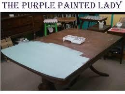 comparison the purple painted lady