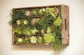 redoubtable diy living wall large planter 20 w x h diy projects