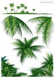 4 designer coconut tree series vector