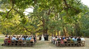 wedding venues in oregon wedding venue at mount pisgah arboretum eugene oregon mount
