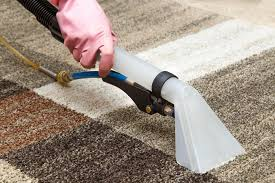 how to vacuum carpet top 5 best wet dry vacuum cleaner for home updated january 2018