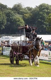 show cart stock photos show cart stock images alamy