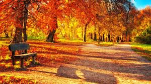 Cute Fall Wallpaper by Autumn Wallpapers Download Group 85